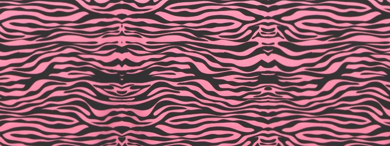 Zebramönster kalastema